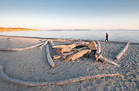The sun adds late pink light on the beach and driftwood at Willows, Oak Bay, Victoria, BC
