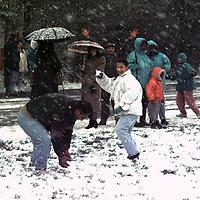 januari 1995_gallery