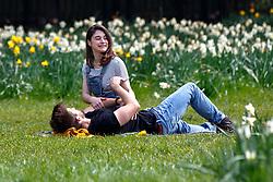 © Licensed to London News Pictures. 03/04/2016. London, UK. People enjoying sunshine and warm weather in Green Park, London on Sunday, 3 April 2016. Photo credit: Tolga Akmen/LNP