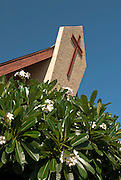 The front of St. Theresa's Church in Kekaha, Kauai, Hawaii with a large cross behind white and yellow plumeria.
