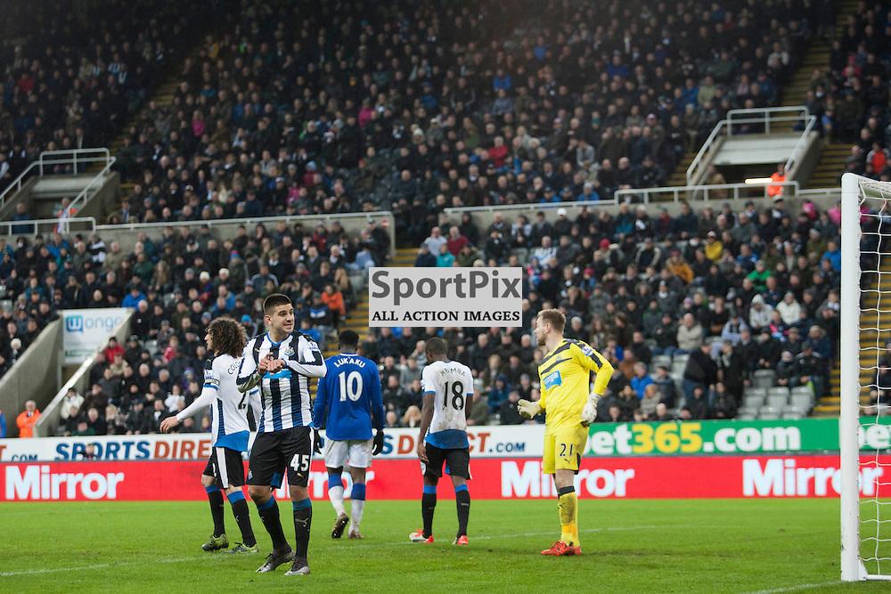 Aleksandar Mitrovic<br />Newcastle v Everton 26 December 2015<br /><br />(c) Russell G Sneddon / SportPix.org.uk