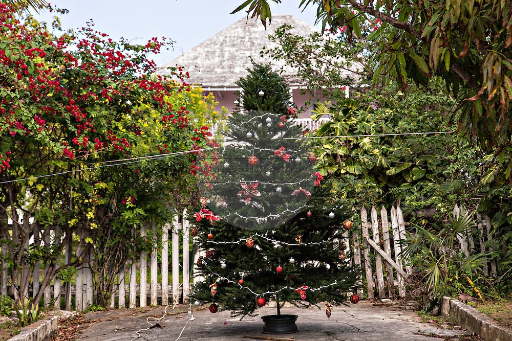 Christmas tree decorates a village lane in Dunmore Town, Harbour Island, The Bahamas