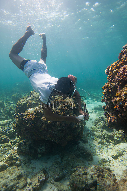 A cyanide fisherman freediving on a shallow reef, about to use a bottle of cyandide solution to kill fish inside a coral bommie, Mabul Island, Sabah, Malaysia.