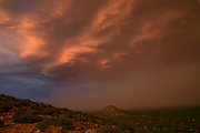 A haboob moves across the desert during a monsoon storm at sunset near Safford, Arizona, USA.