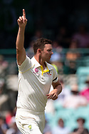 Australian player Josh Hazlewood celebrates the wicket of Indian player K.L Rahul at the 4th Cricket Test Match between Australia and India at The Sydney Cricket Ground in Sydney, Australia on 03 January 2019.