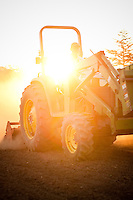 Farmer drives John Deere Tractor at sunrise on organic farm in Oregon.