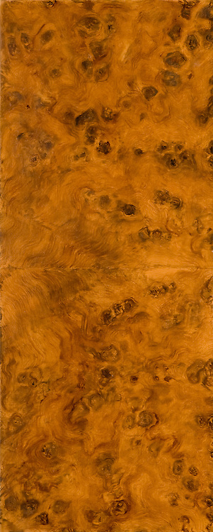 an elm briar-root marquetry wood texture - a painted imitation of wood