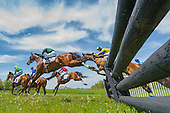 Willowdale Steeplechase 2014