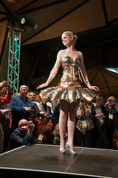 New Zealand, North Island, Wellington, fashion show for WOW World of Wearable Art. Photo copyright Lee Foster. Photo #126662