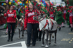 © Licensed to London News Pictures.02/11/2013. London, UK. Reindeers being led during the annual Harrods Christmas Parade on November 2 in Knightsbridge, London. Photo credit : Peter Kollanyi/LNP