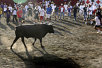Several Costa Ricans provoke a bull to run after them as part of the traditional celebration to farewell old year on Friday December 30, 2005 in San Jose, Costa Rica. Since the middle of the 19th Century  people from all over the country  attend this kind of rodeos  by the end of the year. (Photo/Cristobal Herrera)   .