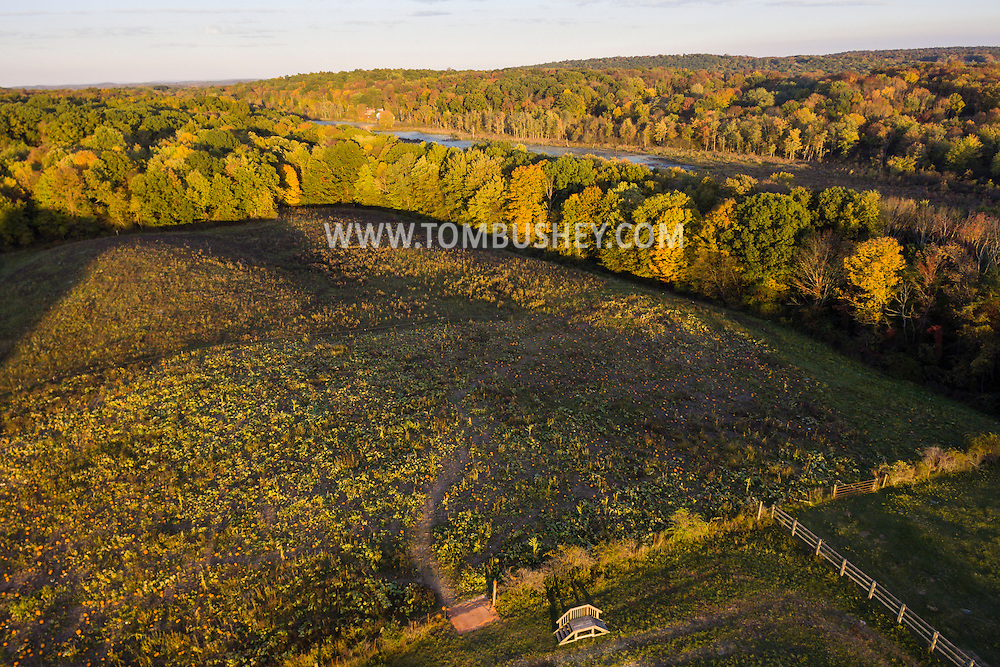 Mount Hope, New York - Autumn scenes at Pierson's Farm on Oct. 7, 2016.