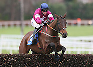 Coral.ie Handicap Hurdle 170116