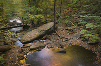 Glen Leigh, Ricketts Glen State Park Pennsylvania