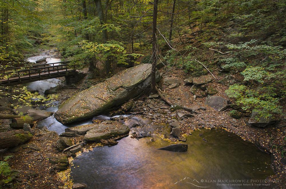 Glen Leigh, Ricketts Glen State Park Pennsylvania