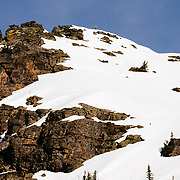 Andy Mahre skis an ice encrusted line off of the backside of Gunsight Peak in Glacier National park.