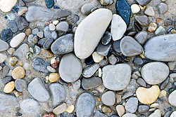 stone on Michigan beach, Petoskey stones