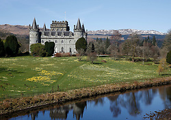 Inveraray Castle in western Scotland, on the shore of Loch Fyne. It has been the seat of the Dukes of Argyll, chiefs of Clan Campbell, since the 18th century. Here bathed in the spring sunshine with the daffodils in full bloom.... (c) Stephen Lawson   Edinburgh Elite media