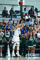 17 November 2017:  Zach Knobloch during an College men's division 3 CCIW basketball game between the Alma Scots and the Illinois Wesleyan Titans in Shirk Center, Bloomington IL
