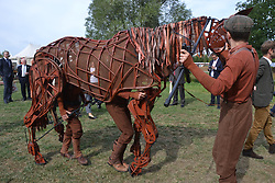 Warhorse, Centenary of Passchendaele 100 years, 1st August 2017