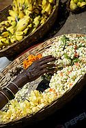 Flower sellers, Mysore, India