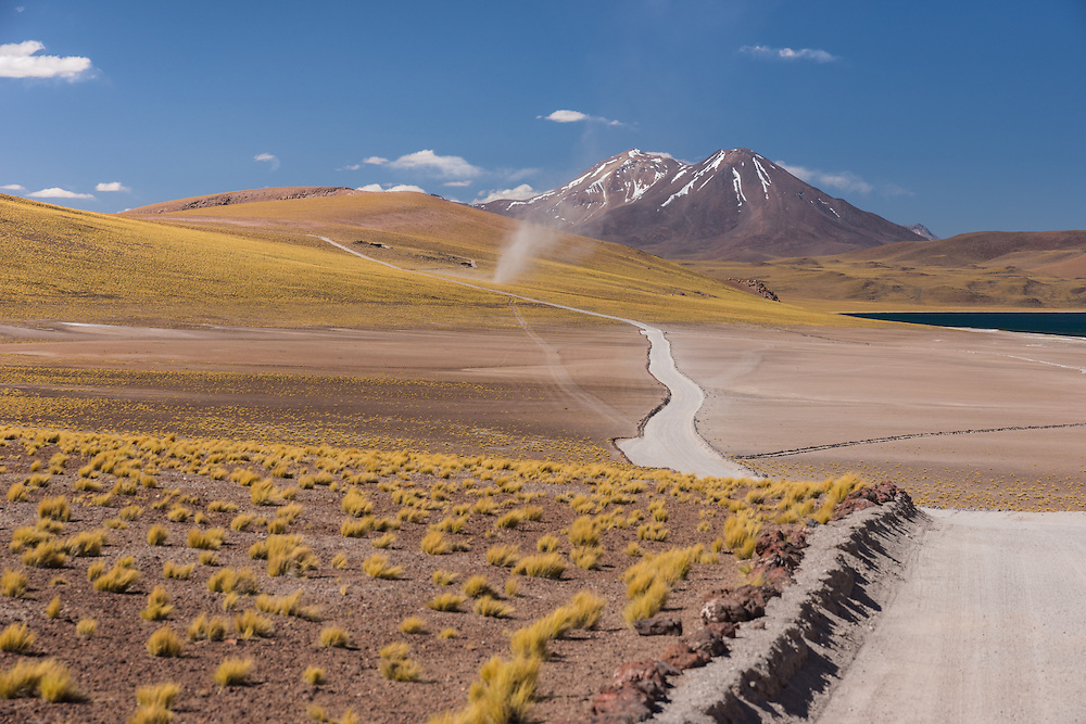 Grassy plains of the highlands with some volcano's on the background, Altiplano, Chile.