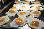 Fried eggs, ready to go in the canteen for lunch. Beaufort House, a skill development unit for enhanced prisoners. Part of HMP/YOI Portland, a resettlement prison with a capacity for 530 prisoners.Dorset, United Kingdom.