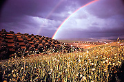 Weather: Rainbow in southern Spain over hills with olive trees.  Rainbows occur when the observer is facing falling rain but with the sun behind them. White light is reflected inside the raindrops and split into its component colors by refraction.