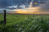 Brilliant sunrise over rnachlands near Ekalaka, Montana, USA