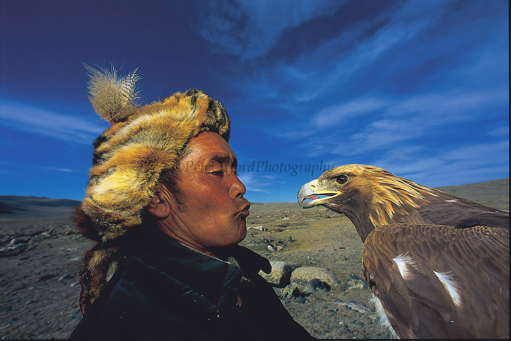 Kazakh Hunter with Golden Eagle<br /> Aquila chrysaetos<br /> Western Mongolia