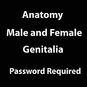 Human Sexuality - Call for  Password Required