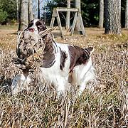 Mia at field practice.  Photos taken, November 21, 2012.  Photography by Melody Carranza.