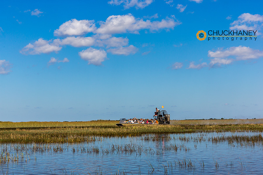 Airboat tour in the sawgrass wetlands in Everlgades National Park. Florida, USA