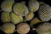 Durian fruits are seen in baskets in Durian Kaki, a roadside fruit stall owned by Tan Eow Chong and his family in Bayan Lepas, Pulau Pinang, Malaysia on Sunday, June 16th, 2019. Tan Eow Chong is an award-winning durian farmer famed for his Musang King variety, and last year exported 1000 tons of the fruit to China from his family-run durian empire, expanding from an 80 acre farm to 1000 acres.  Photo by Suzanne Lee/PANOS for Los Angeles Times