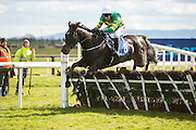 "Horse Racing - Fairyhouse Easter Festival, Monday 28th March 2016<br /> JP McManus owned Slow Motion with M. Walsh in the saddle clears the last and goes on to win the ""Live on at the Races""<br /> Photo: David Mullen /www.cyberimages.net / 2016"