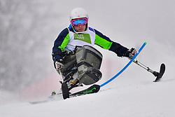 SLIVNIK Jernej, LW12-1, SLO, Men's Giant Slalom at the WPAS_2019 Alpine Skiing World Championships, Kranjska Gora, Slovenia