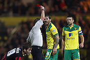 Bradley Johnson gets a red card during the Sky Bet Championship match between Norwich City and Brighton and Hove Albion at Carrow Road, Norwich, England on 22 November 2014.