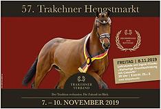 Neumünster - Trakehner Hengstmarkt 2019