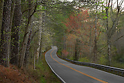 Winding scenic country road passing through woods in Springtime. Vibrant Spring foliage along the wooded road.  James City County, Virginia. Great roads & scenic drives.