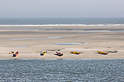 Kayaks along a beach of Little Talbot Island State Park Florida