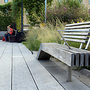 High Line.  Elevated pedestrian Park and former elevated New York Central Railroad spur called the West Side Line, which runs along the lower west side of Manhattan; it has been redesigned and planted as an aerial greenway. New York City.