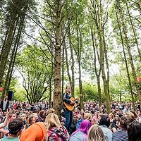 The Xcerts, 2000 Trees Festival, Cheltenham, 2016