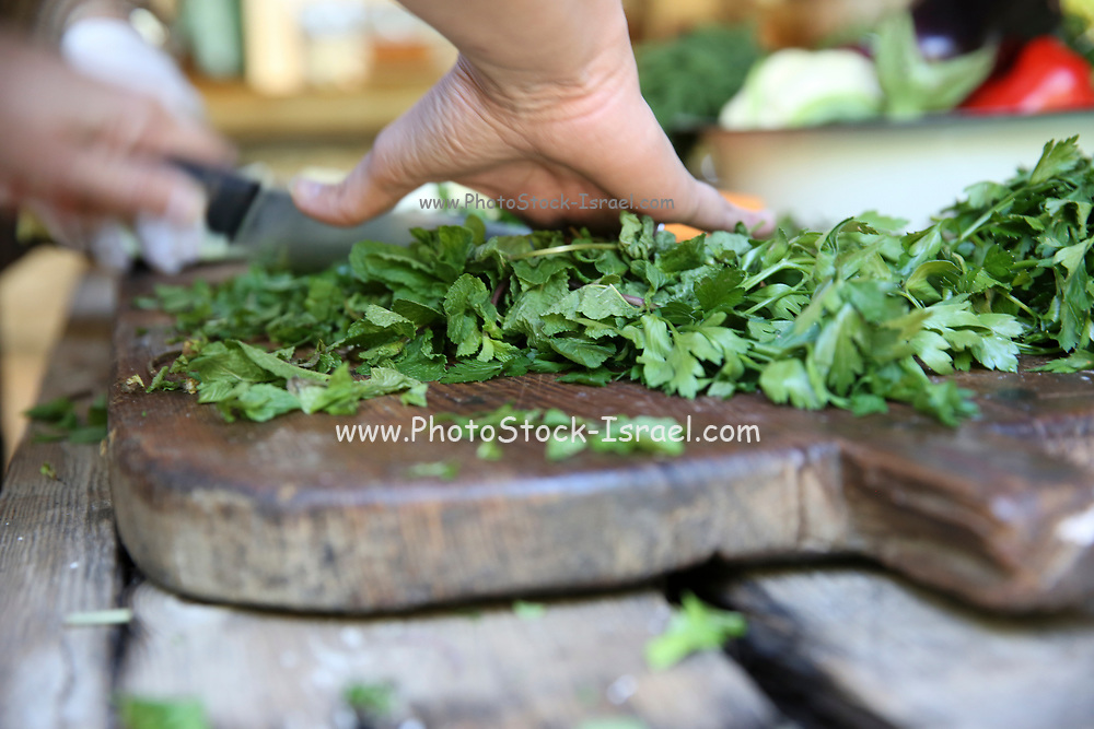 Cutting parsley on a wooden board