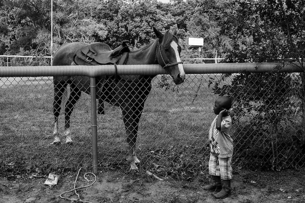 A young boy watches a horse in Gary, Indiana. (© William B. Plowman/Redux)