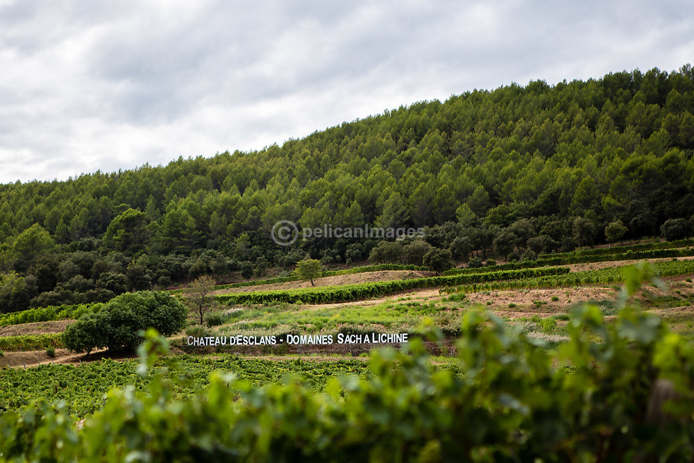 Images from a chateau tour and wine tasting at Chateau d'Esclans, Provence Cote d'Azur, France © Lee Irvine, PelicanImages 2017