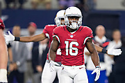 ARLINGTON, TX - AUGUST 26:  Trent Sherfield #16 of the Arizona Cardinals looks to the sidelines for the play during a game against the Dallas Cowboys at AT&T Stadium during week 3 of the preseason on August 26, 2018 in Arlington, Texas.  The Cardinals defeated the Cowboys 27-3.  (Photo by Wesley Hitt/Getty Images) *** Local Caption *** Trent Sherfield