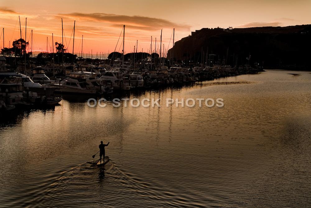 Paddle Boarder In Dana Point Harbor