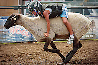 JEROME A. POLLOS/Press..Van Vega, 6, holds onto a sheep as it races through the mutton bustin' arena Wednesday at the Kootenai County Fair.