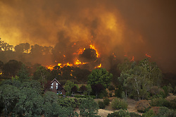 July 31, 2018 - Lakeport, California, U.S. - Fire burns behind a home off of Hendricks Road and Dessie Drive on Tuesday In Lakeport. Mendocino Complex fires had burned 90,212 acres by Wednesday morning, Cal Fire said. (Credit Image: © Jose Luis Villegas/Sacramento Bee via ZUMA Wire)