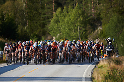 The peloton head toward Halden during Ladies Tour of Norway 2019 - Stage 3, a 125 km road race from Moss to Halden, Norway on August 24, 2019. Photo by Sean Robinson/velofocus.com